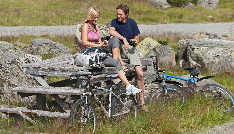 mjølkevegen kart Mjølkevegen cycling route: Vinstra   Valdres   Gol (250 km