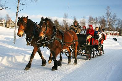 Thumbnail for Horse sleigh ride