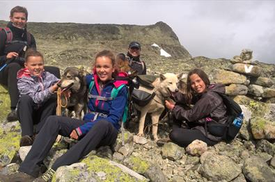 Beito Husky Tours - Husky Hike in the Mountains of Norway