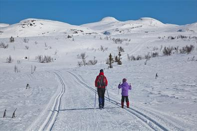 Lenningen and Synnfjell, Cross country skiing