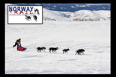 Norway Trail - international sleddog race