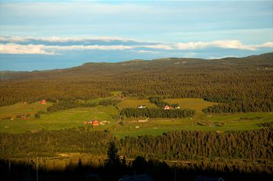 View from Brattstølen towards small farms on the other side of the Valley Tisleidalen in teh evening sun.
