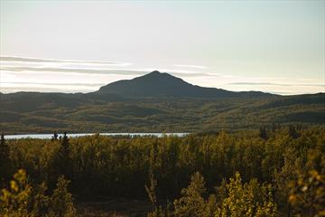Djuptjernkampen rises over green birch forests against the sun.