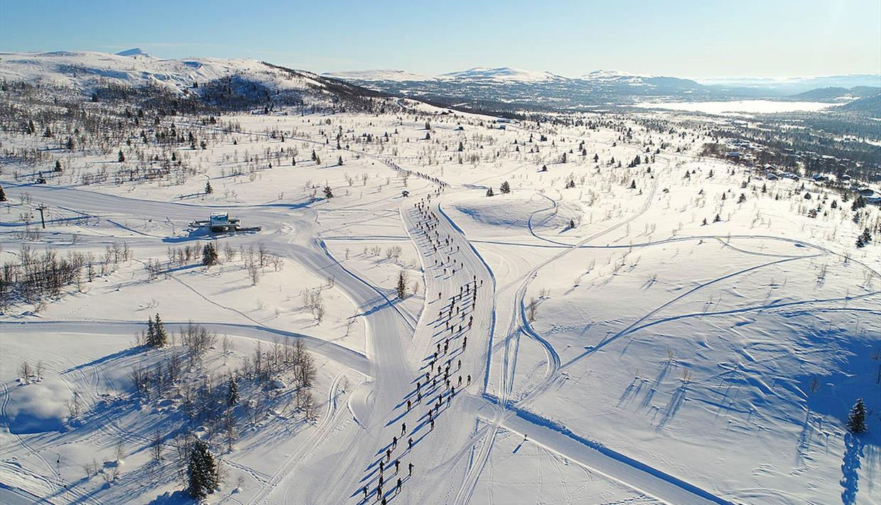 Valdresmarsjen is an annual classical cross country skiing race of 65 km from Beitostølen to Danebu.