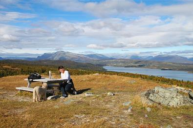 From the picknick spots on the hills on Golsfjellet you can enjoy a formidable view towards mountains and lakes.